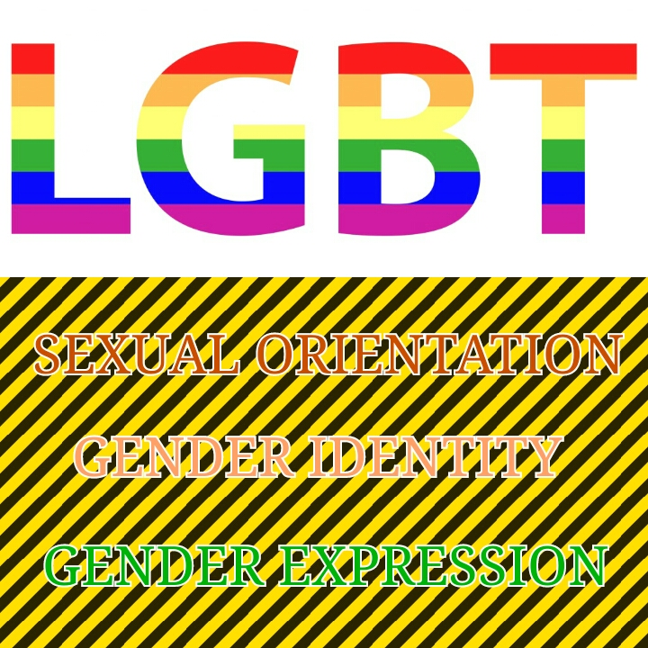 Sogiesexual Orientation, Gender Identity And Expression -4151